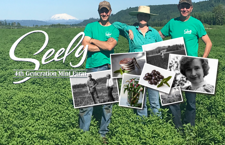 Meet Mike Seely and his family, 4th Generation Mint Farmer and Founders of Seely Mint.
