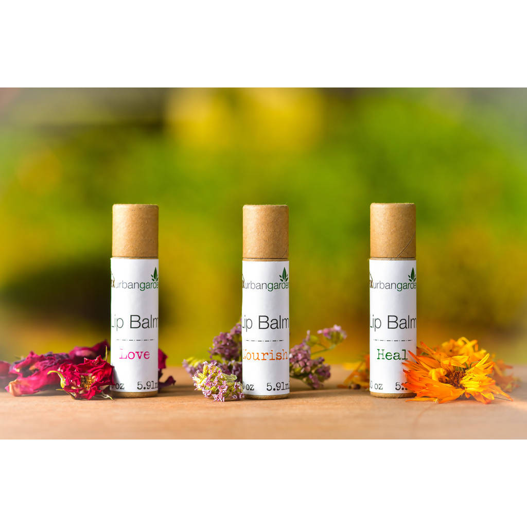 Love, Heal, Nourish Variety Pack Lip Balm