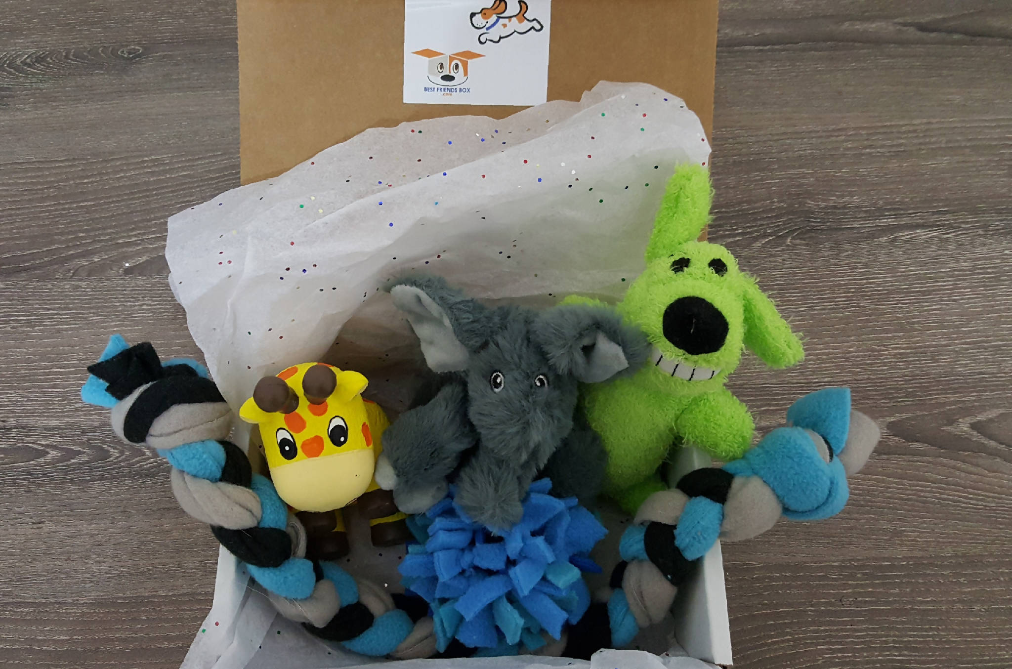 Dog Toys: Gift Box from BestFriendsBox.com - 5 toys!