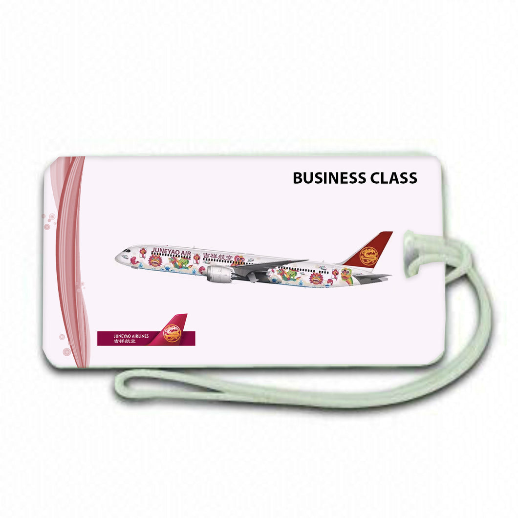 Business Class Juneayo Airlines Luggage .airports