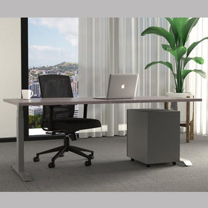 HiLo Height Adjustable Desk