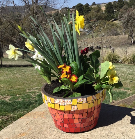 Mosaic Garden Pot made using colourful ceramic tiles.