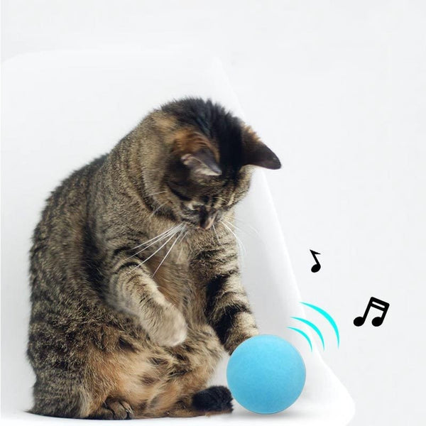 Balle intelligente pour chats