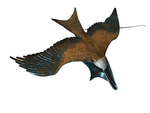 Bronze Red Kite 1/4 Size by Sculptor Andrew Glasby - Limited Edition