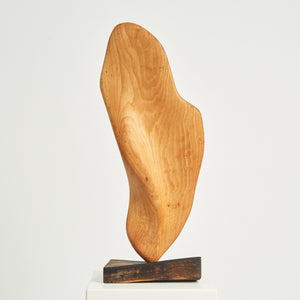 Large wooden biomorphic sculpture