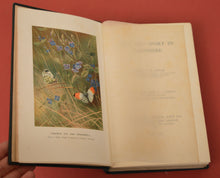 Load image into Gallery viewer, Life and Sport in Hampshire by George Dewar, Illustrated by Archibald Thorburn, 1908