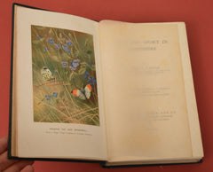 Life and Sport in Hampshire by George Dewar, Illustrated by Archibald Thorburn, 1908