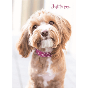 Puppy 'Just to Say' Blank Card - Cotswold Jewellery