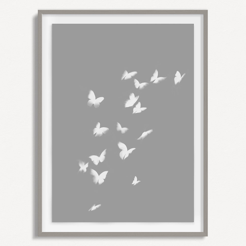 Smokey Butterfly 1 - Gray - Small