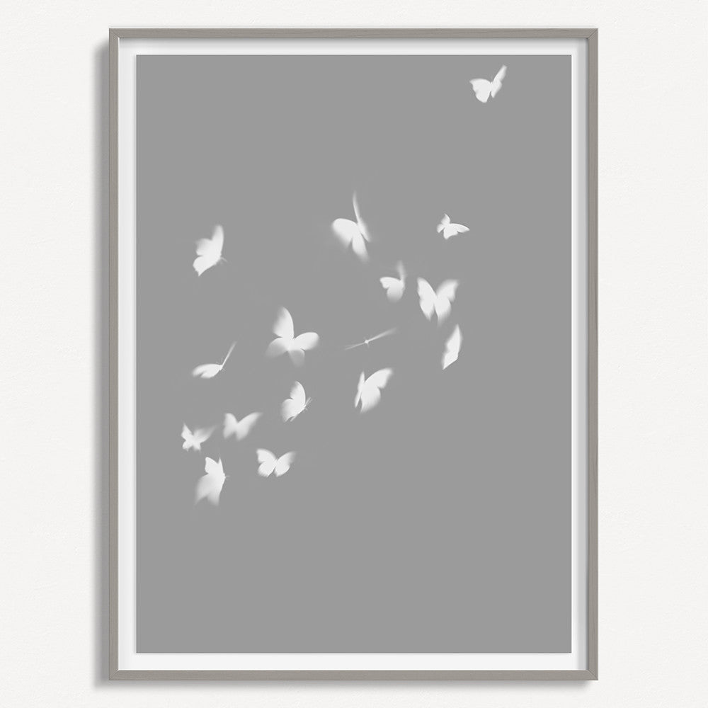 Smokey Butterfly 3 - Gray - Large
