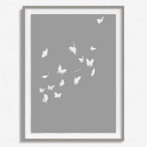 Smokey Butterfly 3 - Gray - Small