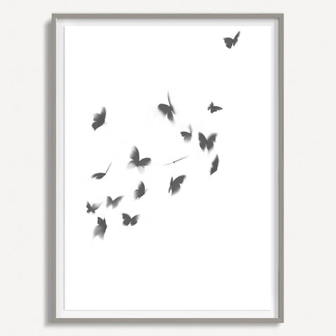 Smokey Butterfly 3 - Large