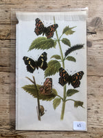 Load image into Gallery viewer, Vintage Butterfly Book Plate - Red Admiral (No.43)