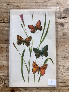 Vintage Butterfly Book Plate - Small Copper (No.15)