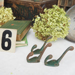 Load image into Gallery viewer, Green Rustic Metal Hooks