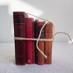 Pink Vintage Book Bundle