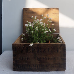 Rustic Storage Box with Topography