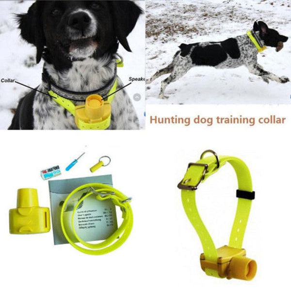 Hunting Dog Beeper Collars Waterproof Dog Training Collar 8 built-in Beeper Sound Dog Beeper Sports Training Hunting Pet Collar - HuntPost Marketplace