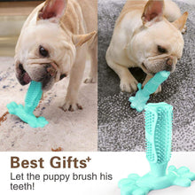 Load image into Gallery viewer, 🔥World's Most Effective Dog Toothbrush