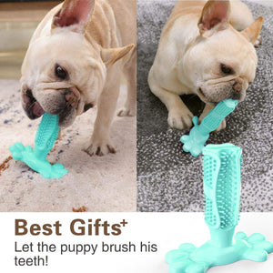 🔥World's Most Effective Dog Toothbrush