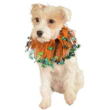 Load image into Gallery viewer, Halloween Spider Dog Collar