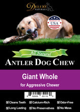 Load image into Gallery viewer, Elk Antler Dog Chew - Giant Whole