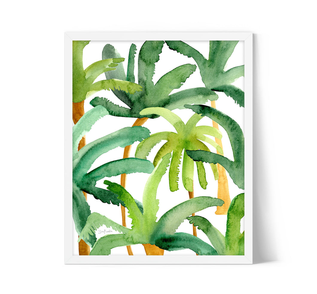 Palm Trees by Sara Franklin