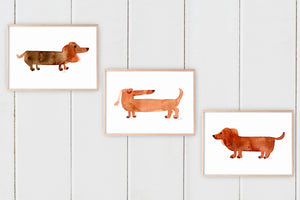 Dachshunds Print Set of 3 by Sara Franklin