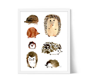 Hedgehogs by Sara Franklin