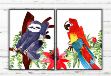 Load image into Gallery viewer, Sloth Macaw Print Set by Sara Franklin