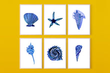 Load image into Gallery viewer, Watercolor Seashell Collection by Sara Franklin
