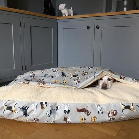 The Burrow Dog Bed
