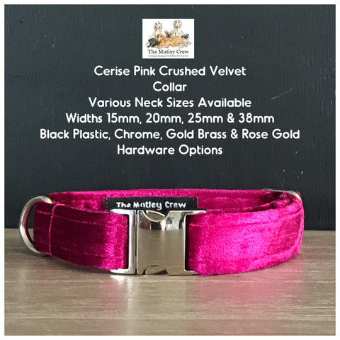 cerise pink crushed velvet dog collar