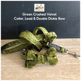 green crushed velvet collar, lead and bowtie