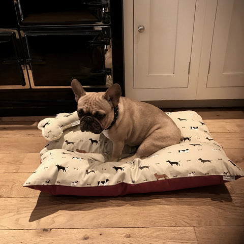 Sophie Allport Fabric Dog Beds - The Cushy