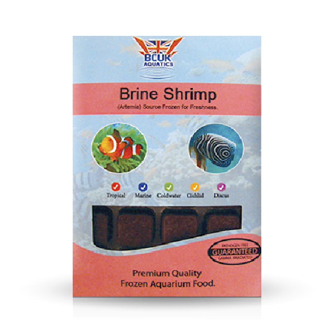 Brine Shrimp Blister Pack 100g