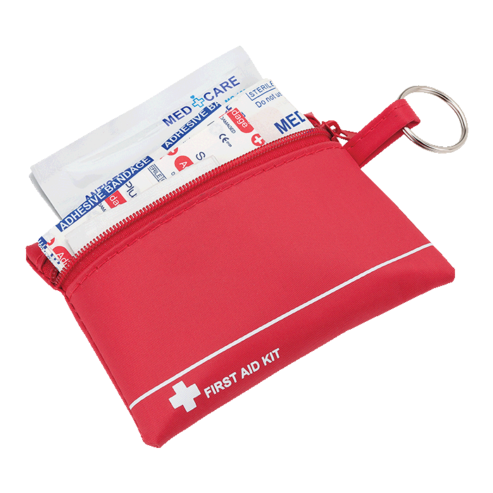 Mini First Aid Kit in Zip Pouch