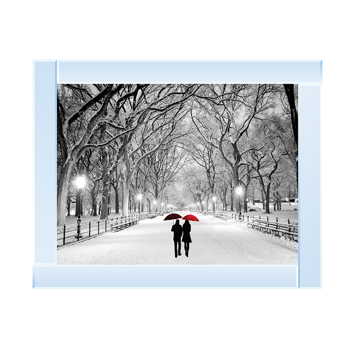 Couple Central Park Snow