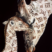 Lv Giraffes Artwork