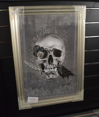Skull with Crow Artwork