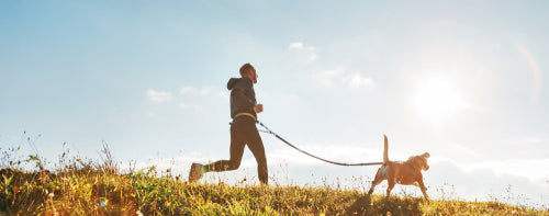 man jogging with dog in sunlit field