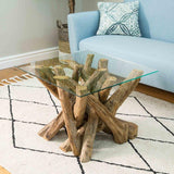 Earth Teak Branchwood Square Coffee Table with Glass Top