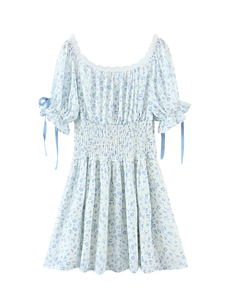 Blue Floral Lace Trim Bow Dress