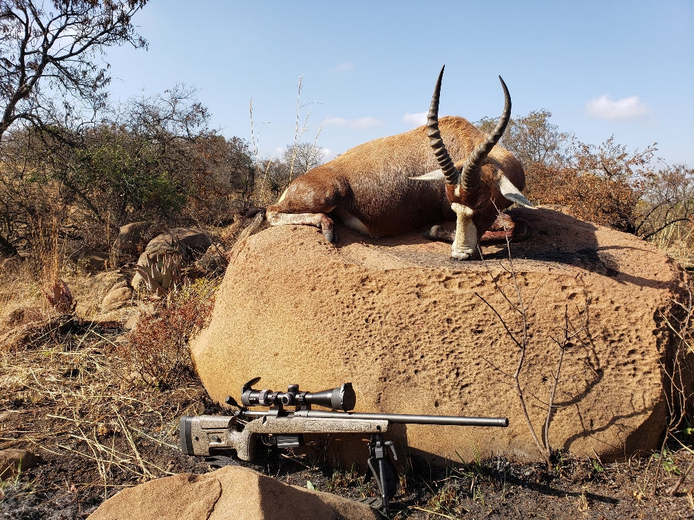 Twall113 - African Plains Impala Hunt