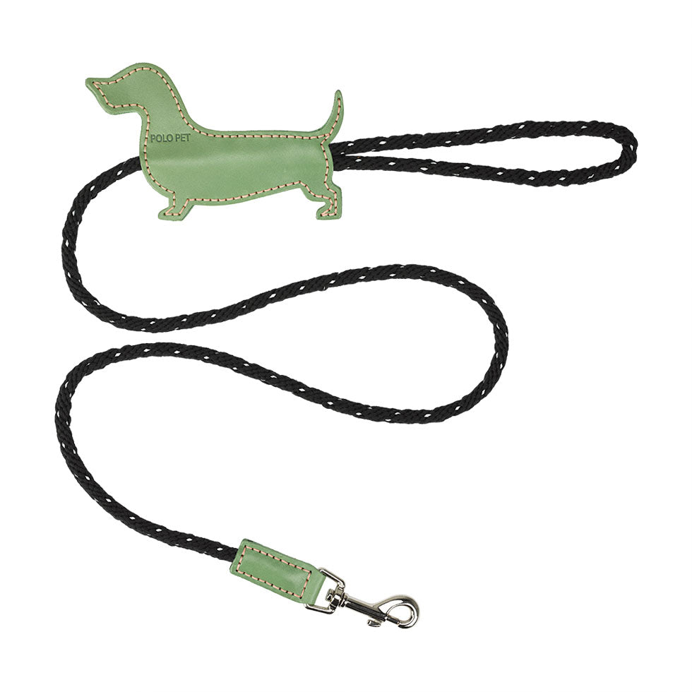Dachshund  Black X Green leash - Pink Stitch