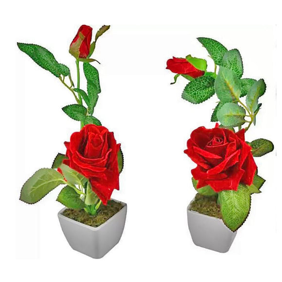 Single Flower with Vase (2 Piece)