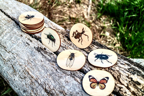 Australian Themed Magnets -Bugs- 14 Pieces