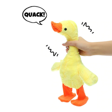 Load image into Gallery viewer, The Talking, Singing and Walking Duck