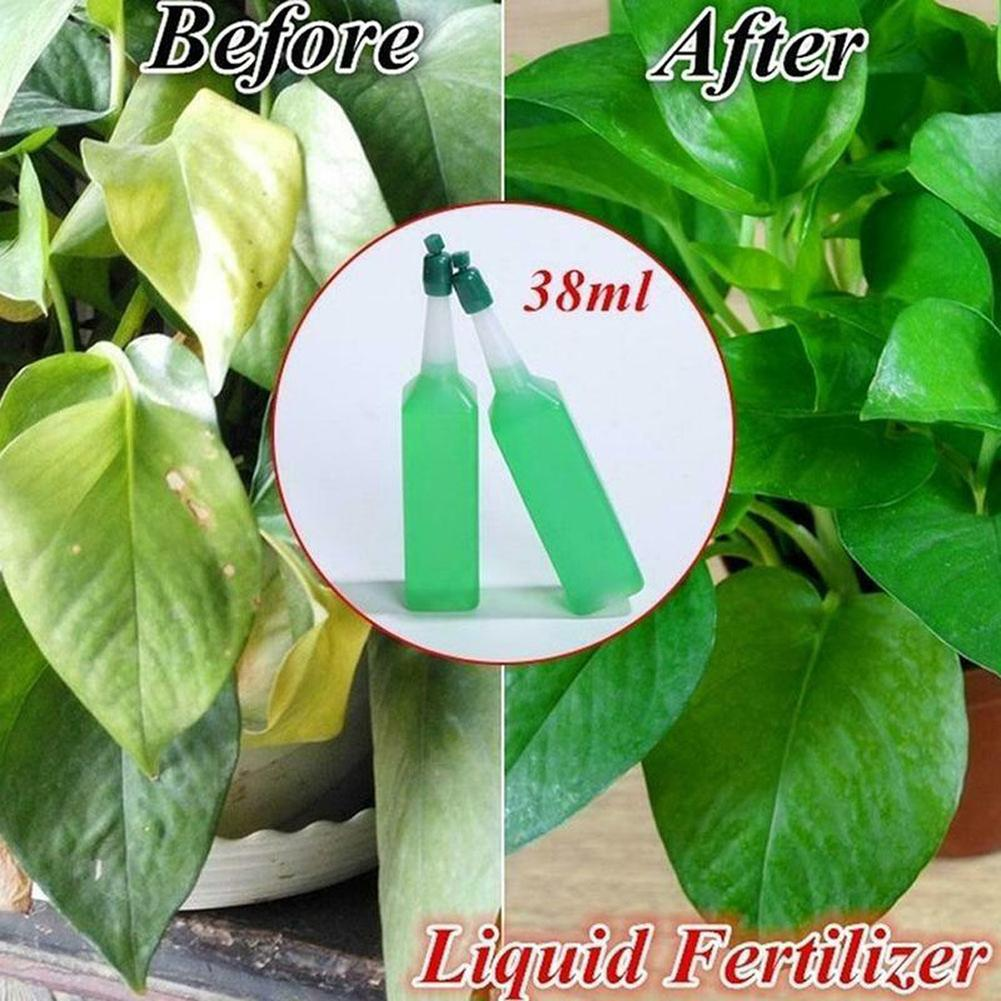 Hydroponic Liquid Fertilizer