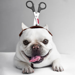 PEGOISM Scissor Headwear Pet Costume - For Dogs and Cats - Perfect for Halloween, Christmas, Cosplay and Fancy Dress Parties